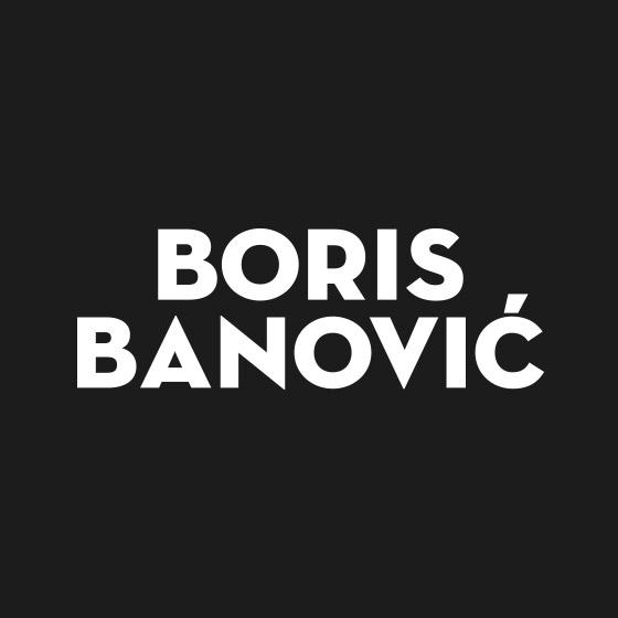 Boris Banović - Logo