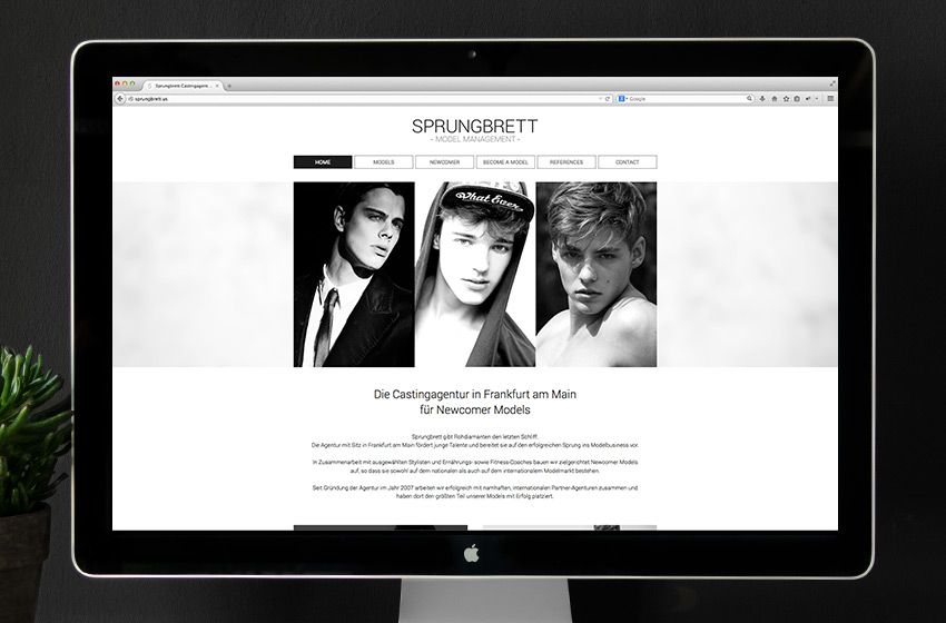 ENVY Project - Korporativni identitet za modnu agenciju Sprungbrett